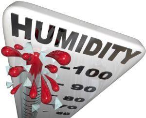 Humidity Summer Winter