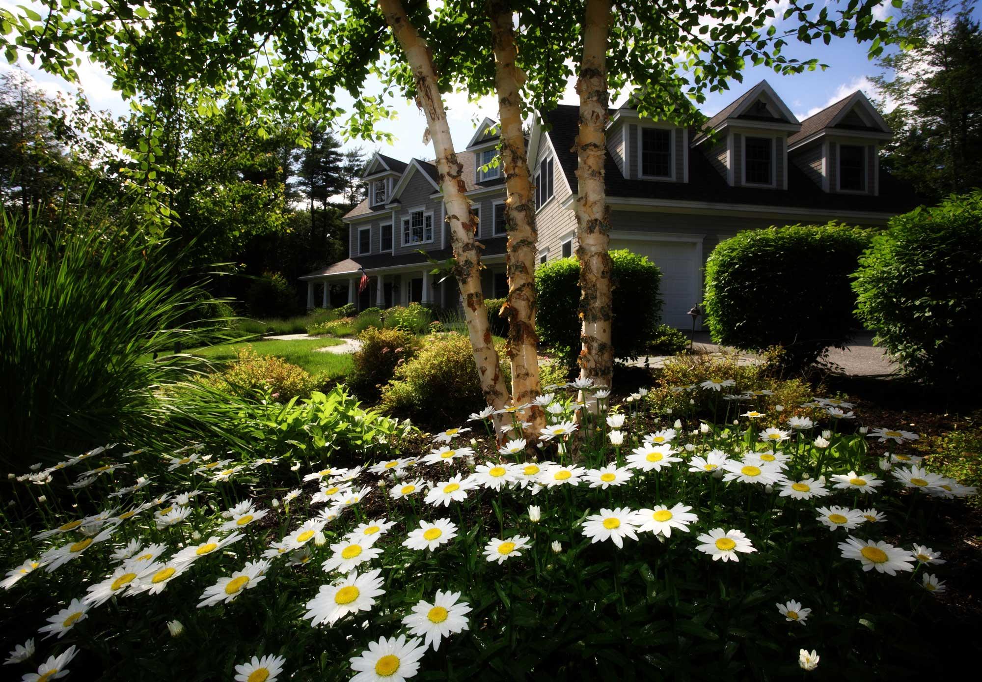 Spring Home Appliance Checklist Toronto
